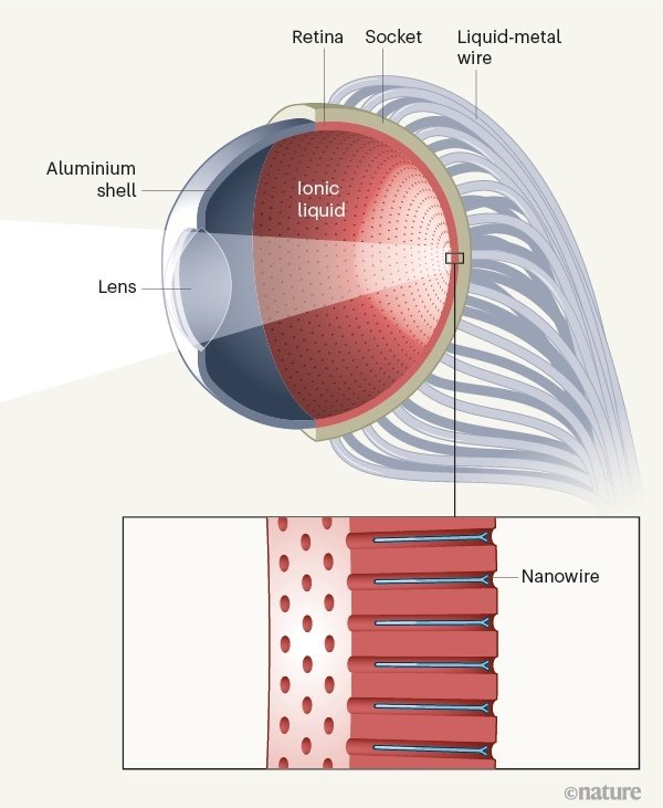 HKUST's conceptual design of a bionic eye