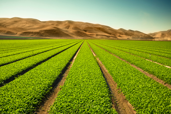 onesoil raises 5 million for its farm monitoring tech hyperedge embed image