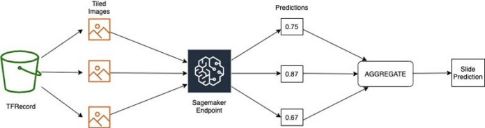 build a scalable machine learning pipeline for ultra high resolution medical images using amazon sagemaker 5 hyperedge embed image