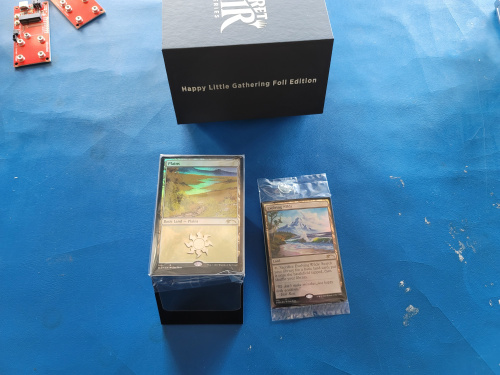 Happy Little Gathering Magic Cards