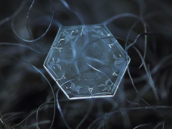 macro-photography-snowflakes-alexey-kljatov-19
