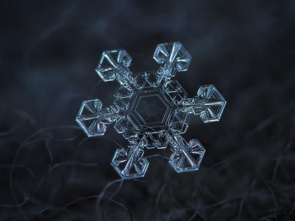 macro-photography-snowflakes-alexey-kljatov-5
