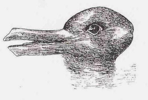 duck-or-rabbit-illusion