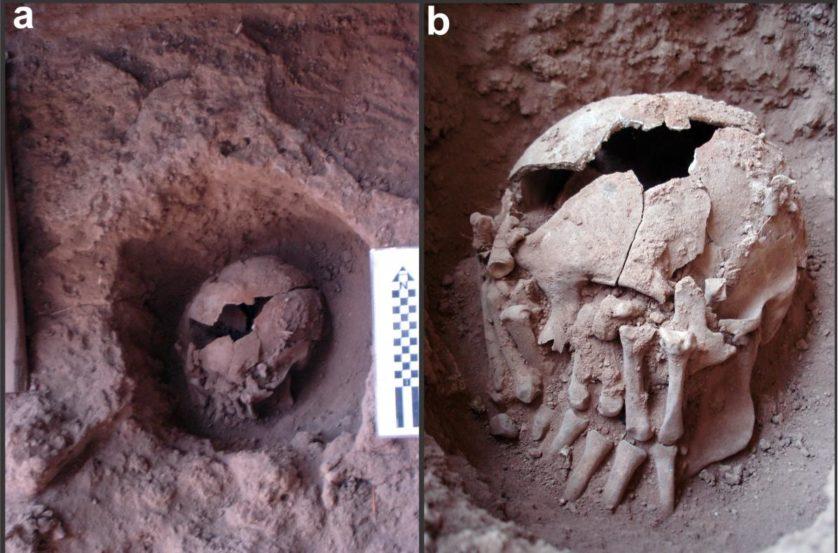 decapitacao 9000 anos brasil 4