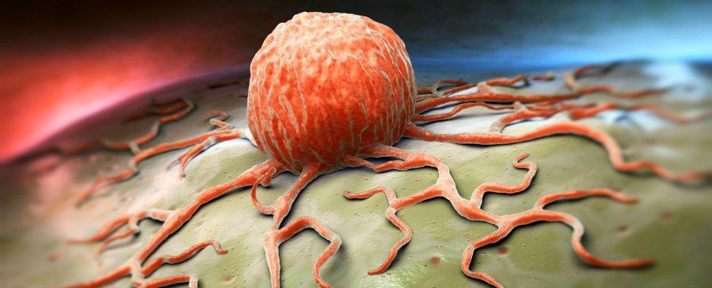 https://i2.wp.com/hypescience.com/wp-content/uploads/2016/01/celulas-cancerigenas-e-quimio-mais-eficiente.jpg