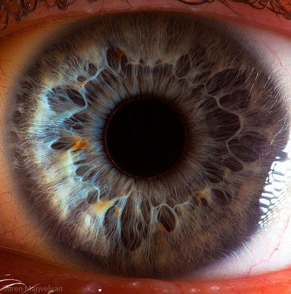 closes olho humano (18)