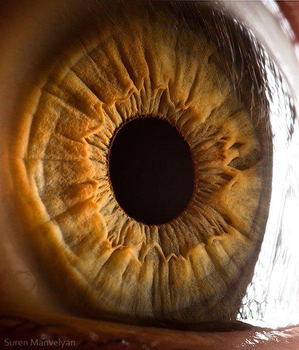 closes olho humano (19)