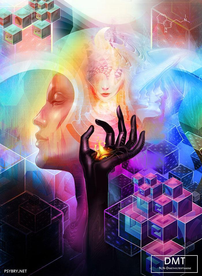 efeitos drogas arte 11