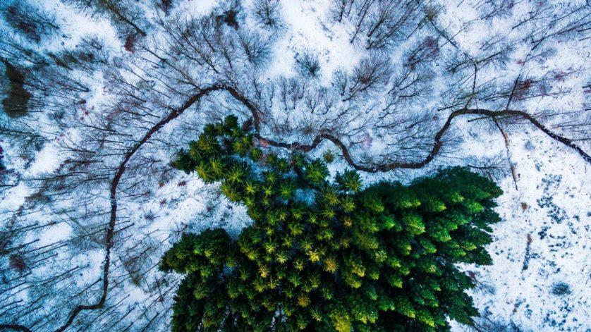 fotos com drones 3