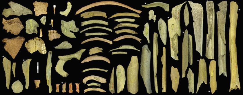 assustadoras-descobertas-arqueologicas-25
