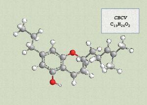 cannabichromevarin cbcv