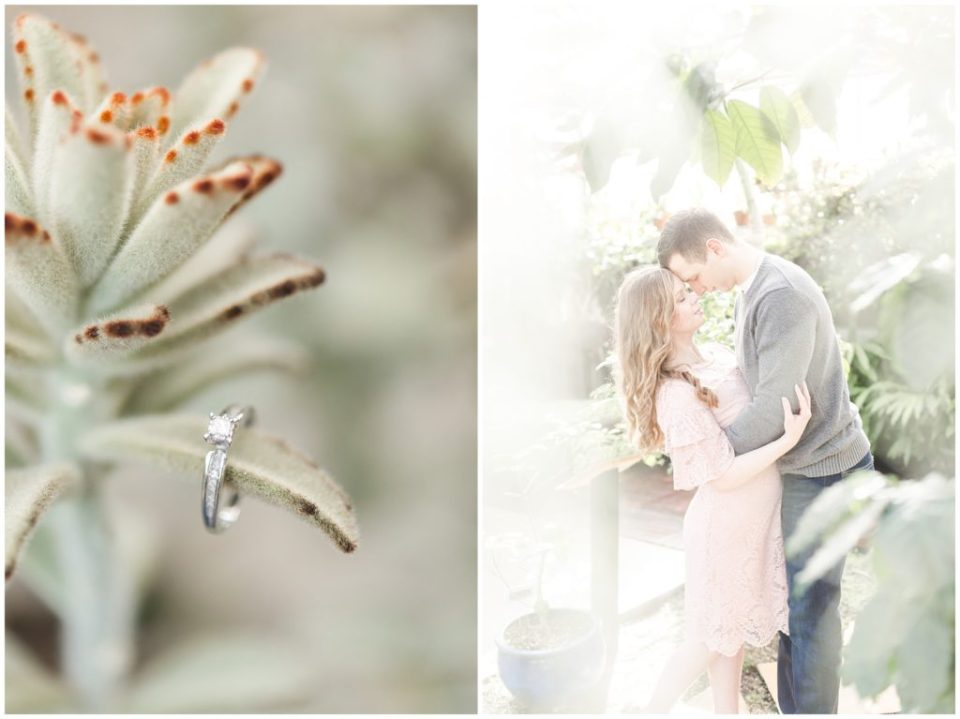 detailed greenhouse engagement session