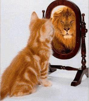 Picture: How to be Confident with Hypnotherapy Ipswich