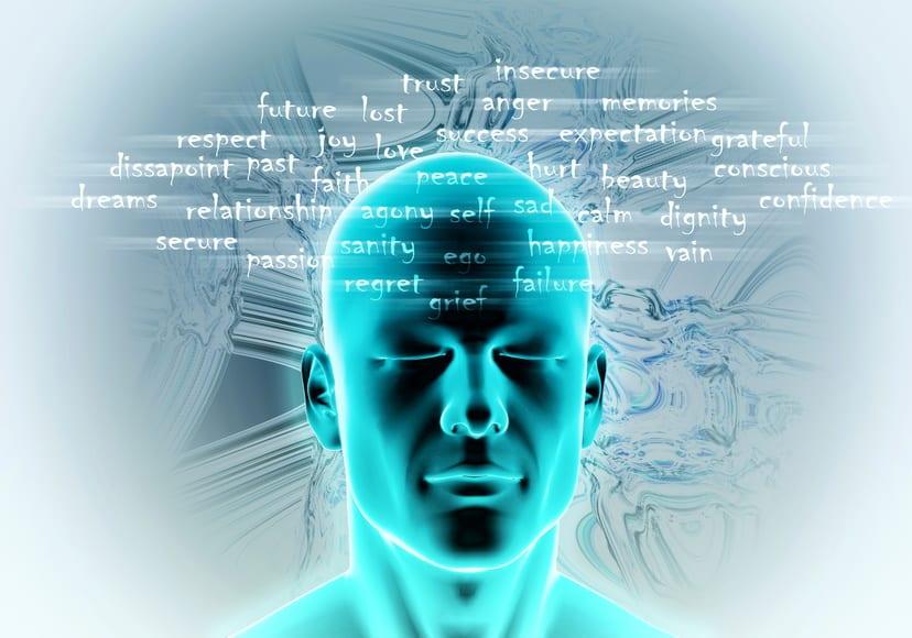 Les styles d'hypnose : A la découverte du vivant