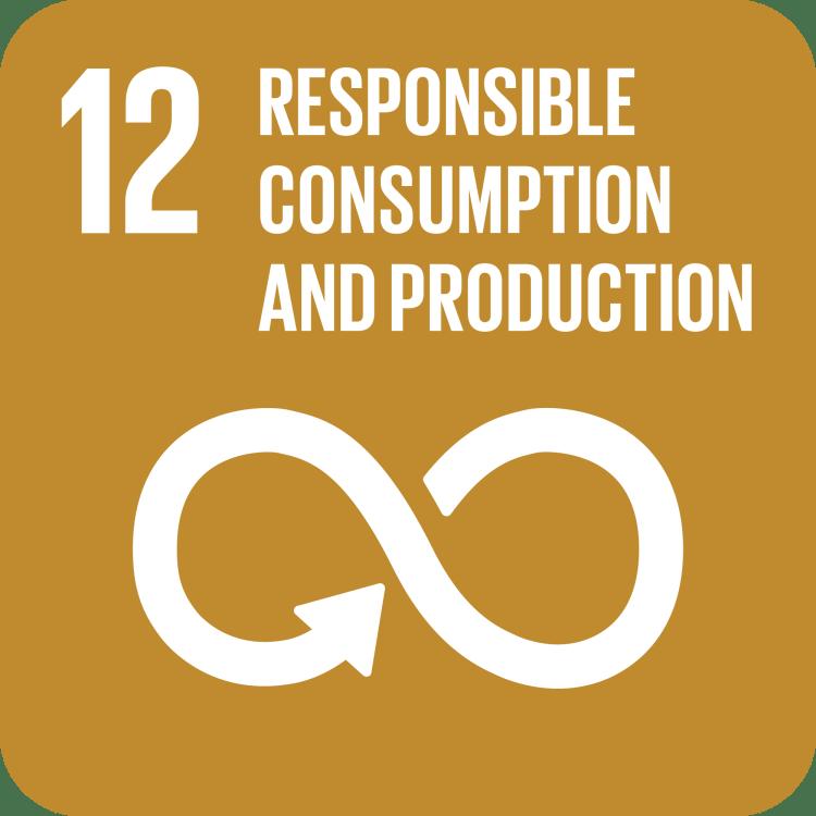 UN SDG Goal 12