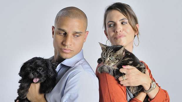 Differences Between A Cat Guy And Dog Guy – Which one are you