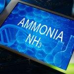 Bild Ammoniak NH3