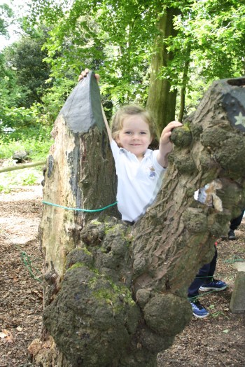 Yeovil Country Park (39)