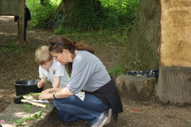 Yeovil Country Park (40)