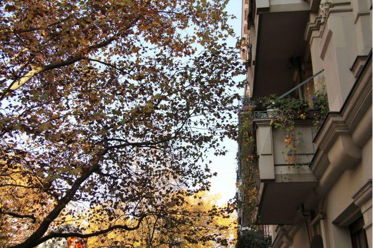 balcon prenzlauer berg berlin automne