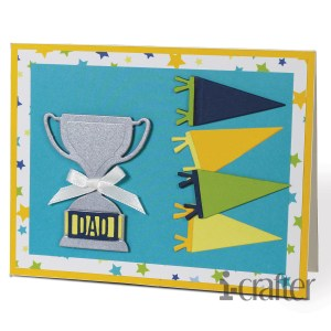 Trophy and Pennants