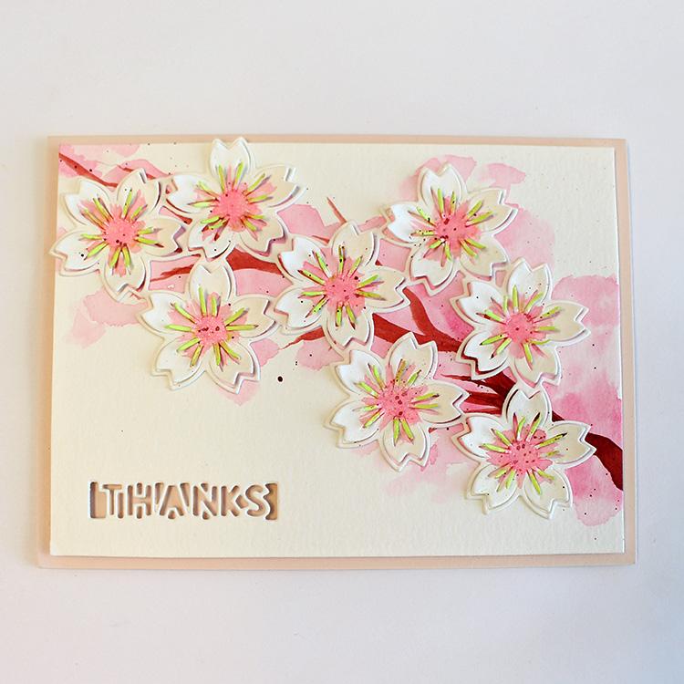 Cherry Blossom Bursts
