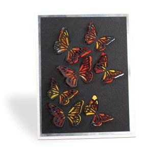 Butterfly Bursts
