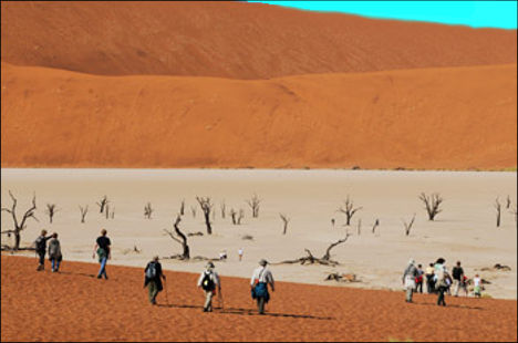 deadvlei, visitors descending into the white sandy pan