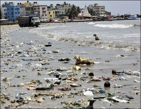 versova beach mumbai cleanup