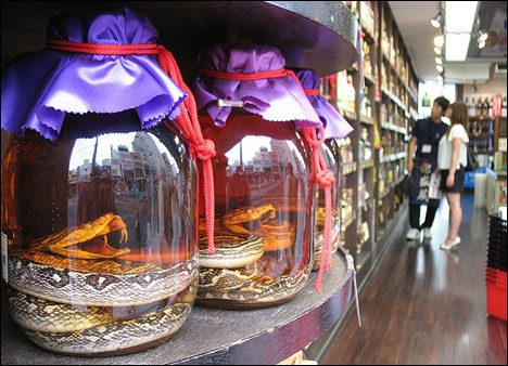 Limits Good Taste weirdest-food-snake-wine