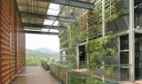 shenzhen low carbon city