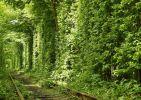 Tunnel of love latitude longitude: