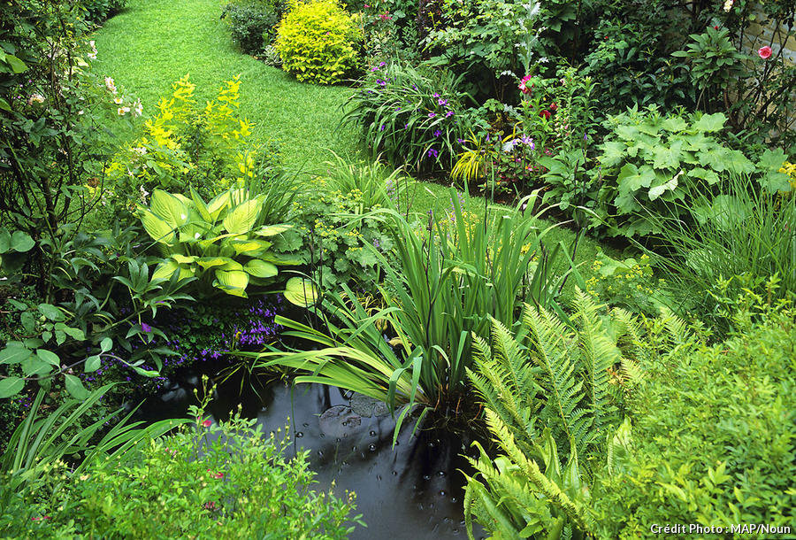 Petit jardin divisé