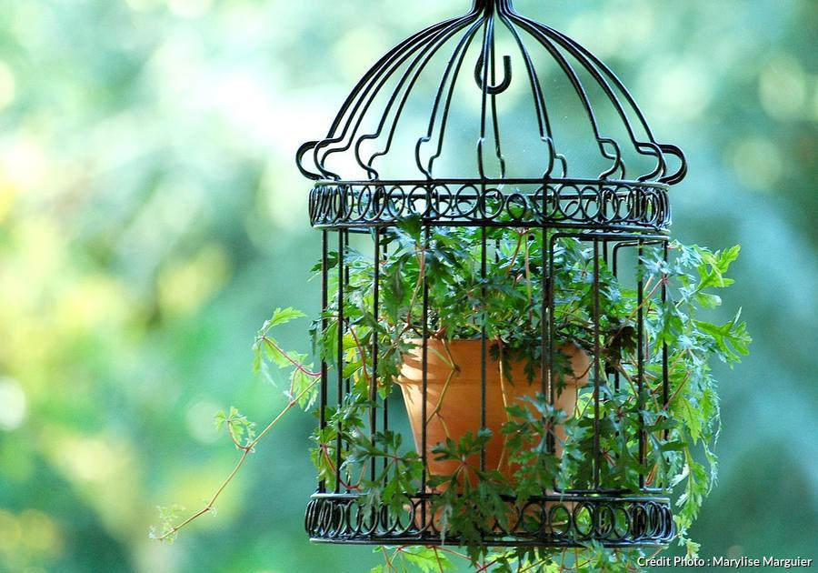 20 idees deco pour le jardin