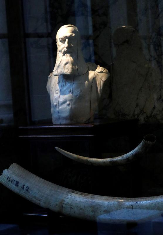 © Reuters. A statue of Belgian King Leopold II is seen in Belgium's Africa Museum in Tervuren
