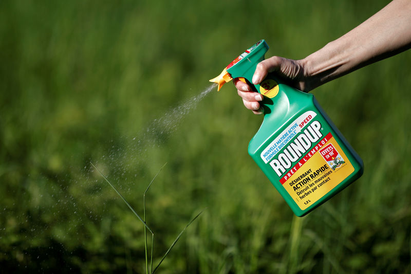 © Reuters. FILE PHOTO: A woman uses a Monsanto's Roundup weedkiller spray without glyphosate in a garden in Ercuis near Paris