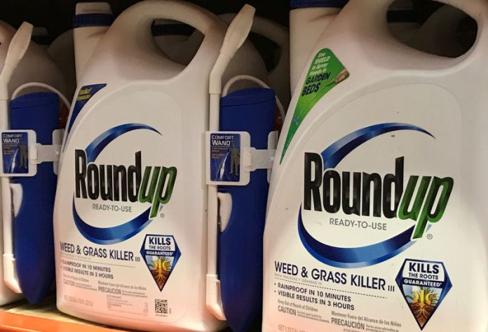 © Reuters. FILE PHOTO: Monsanto Co's Roundup shown for sale in California