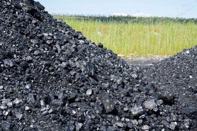 Exclusive: Citi, HSBC, prudent hatch plan for Asian coal closure - sources