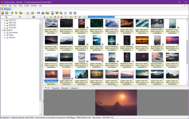 XnView 2.49.5 Complete