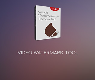 GiliSoft Video Watermark Tool