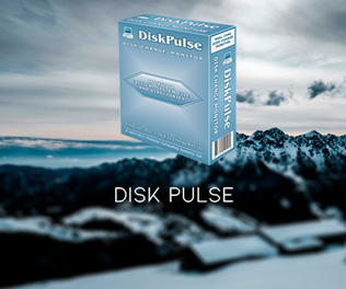 Disk Pulse Ultimate