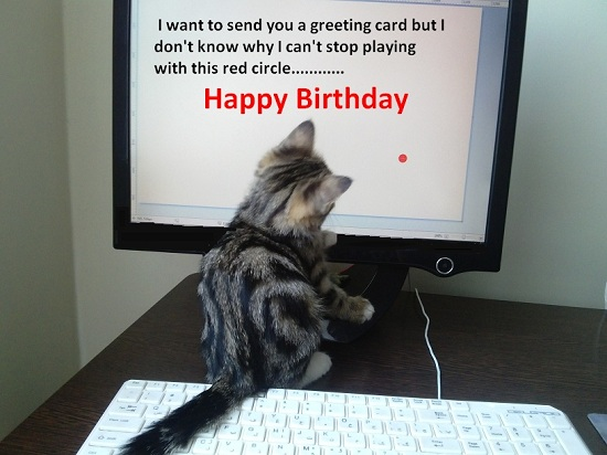 Birthday Greeting From Kitty Free Happy Birthday ECards Greeting Cards 123 Greetings