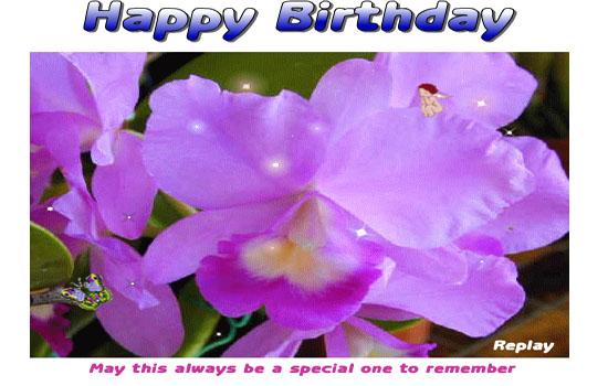 Happy Birthday With Mauve Orchids Free Happy Birthday