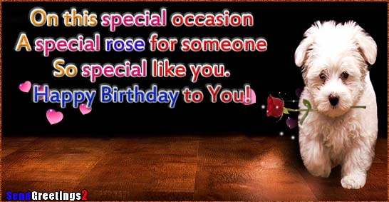 A Special Rose For Someone So Special Free Happy Birthday ECards 123 Greetings