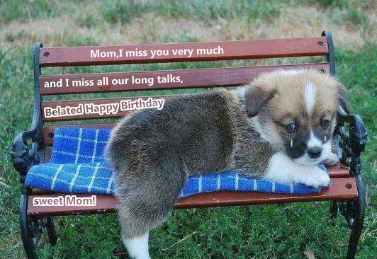 Mom I Miss You Very Much Free Miss You ECards Greeting Cards 123 Greetings