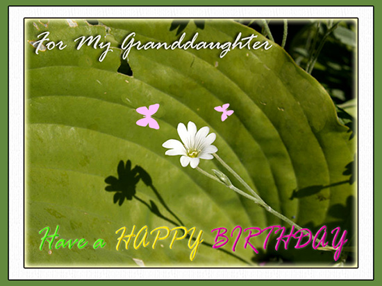 123 Greeting Birthday Cards For Granddaughter Cardss