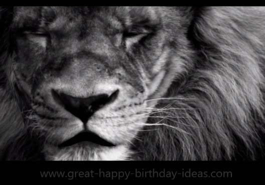 A Mighty Lion Birthday Wish Free Specials ECards Greeting Cards 123 Greetings