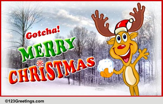 Gotcha Merry Christmas Free Merry Christmas Wishes