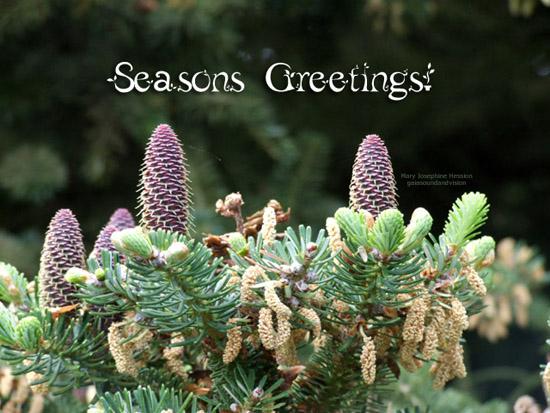 Seasons Greetings Free Business Greetings ECards Greeting Cards 123 Greetings
