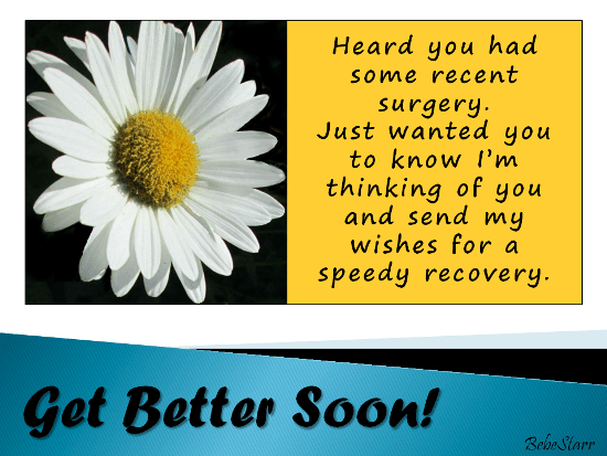 A Daisy For You Free Get Well Soon ECards Greeting Cards 123 Greetings